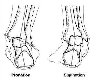 Foot Pronation